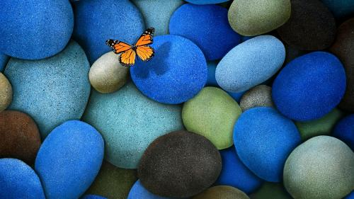 1372535588_yellow-butterfly-on-blue-stone_500